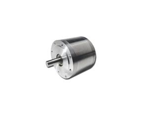Bo¸rstelos DC motor til barske miljoer - prae¦cis og variabel hastighedskontrol